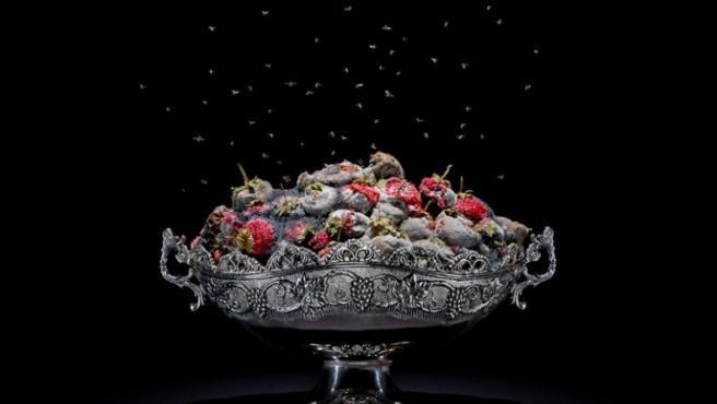 Pichler fotografía unas fresas de invernadero procedentes de Verona (Italia)