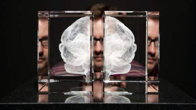 Representación de un cerebro en la exposición 'Cerebros: la mente como materia'.