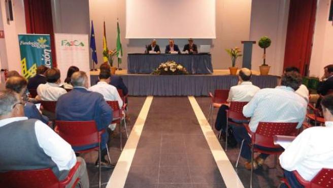 Jornada De Faeca Sobre Los Cultivos Herbáceos En Escacena Del Campo.
