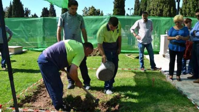 Exhumation of Remains in a Grave in Alicante