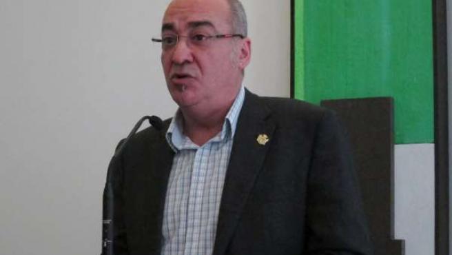 Martin Garitano