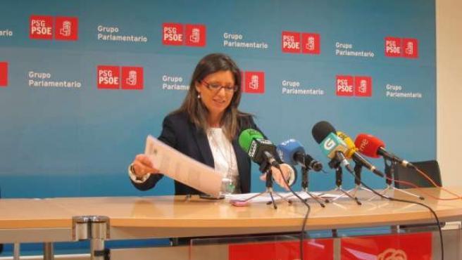 María José Caride, Diputada Del Psdeg