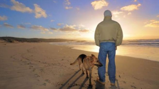 Un hombre y su perro, paseando por una playa.