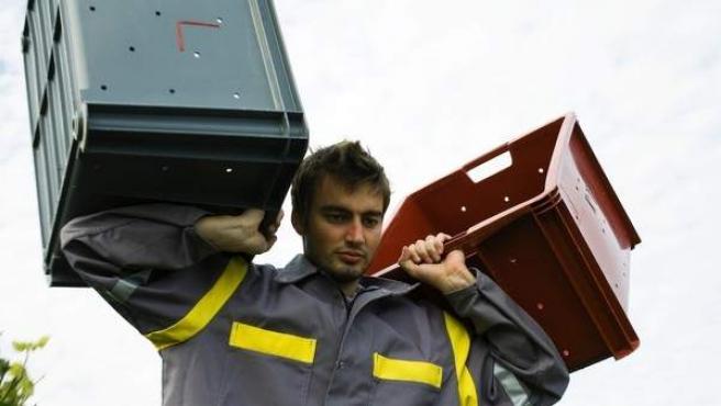 Un trabajador transportando unas cajas de plástico.
