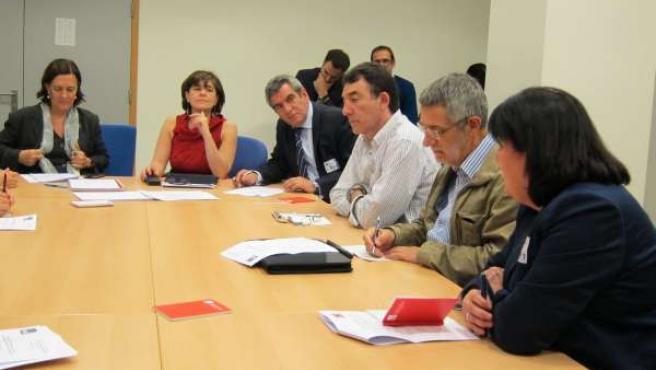 La Delegación De Cyl Con Los Europarlamentarios Del PSOE