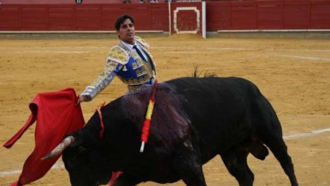 El Torero Francisco Rivera
