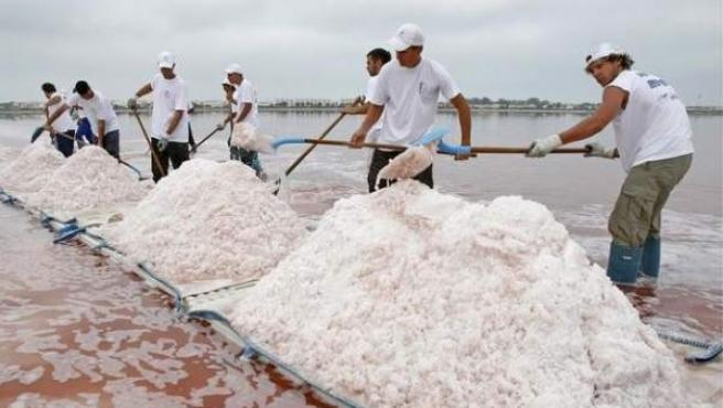 Varios trabajadores franceses de las Salinas del Midi recogen Flor de Sal en Aigues-Mortes.
