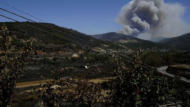 Rosales quemados en una vivienda de Millarouso (O Barco de Valdeorras) y al fond