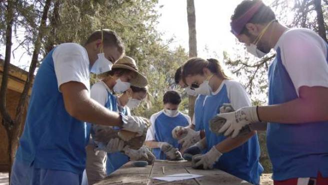 Jóvenes participantes en el campo de trabajo de Medina Azahara