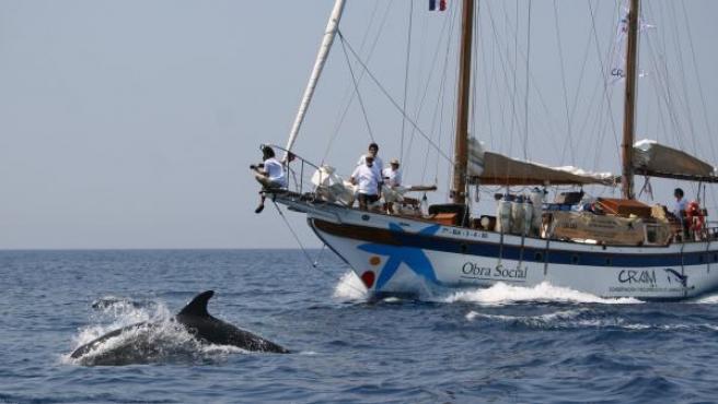 Un barco encargado de explorar los fondos marinos navega por el Mediterráneo.