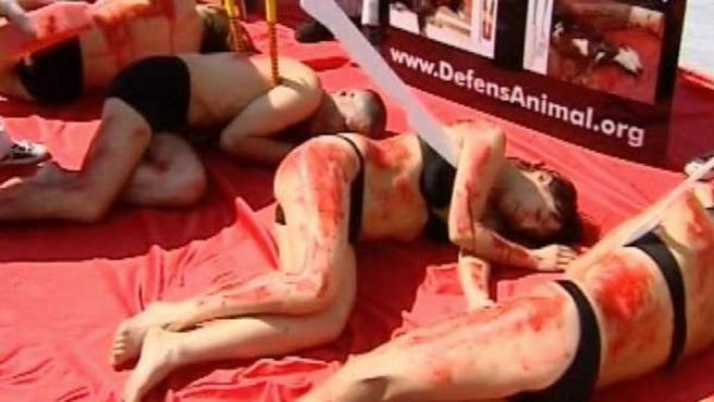 Activistas piden el fin de la fiesta taurina