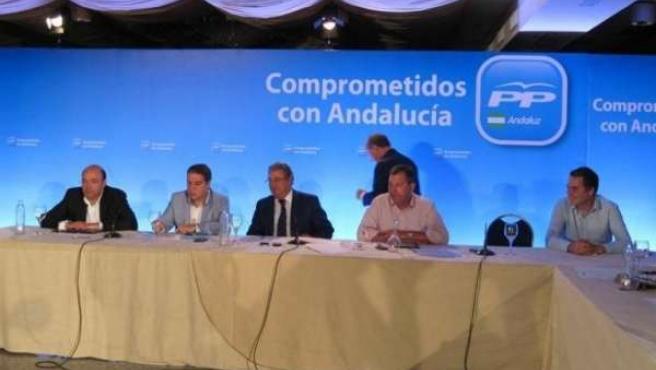 Comité De Gobiernos Locales Del PP-A,