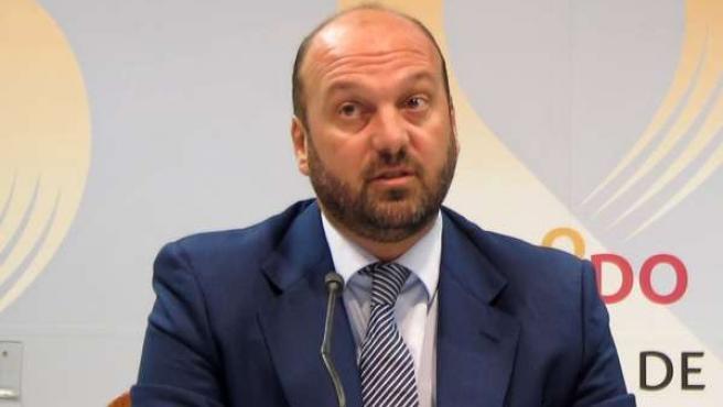 El portavoz del equipo de gobierno del Ayuntamiento de Sevilla, Francisco Pérez
