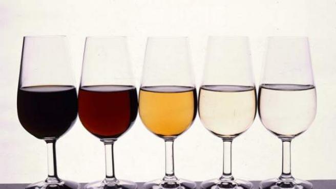 Cinco catavinos con cinco muestras de vino.