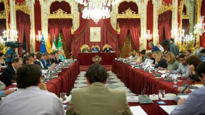 Pleno de la Diputacion de Cádiz