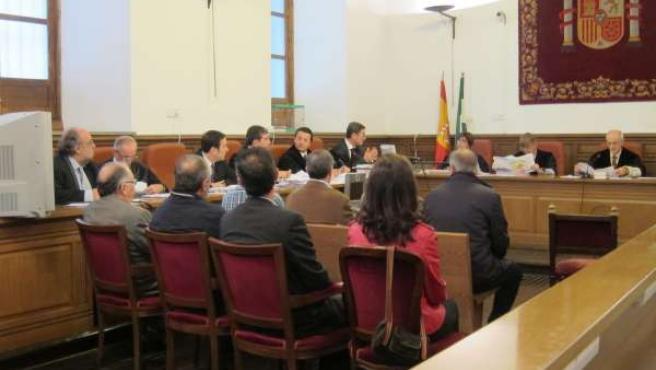 Juicio al alcalde de Gójar, Francisco Javier Maldonado, en la Audiencia
