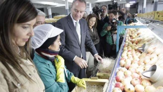 Alberto Fabra visita las instalaciones de la Cooperativa Cambayas
