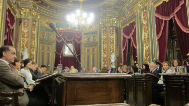 Sesión plenaria del Ayuntamiento de Bilbao.