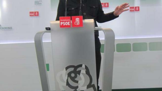 El vicesecretario del PSOE-A, Mario Jiménez, hoy en rueda de prensa
