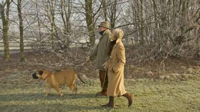 Dar un paseo con el perro, un ejercicio perfecto en la tercera edad.