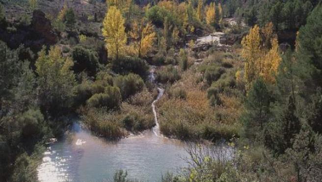 Reserva natural Las Hoces del Cabriel.