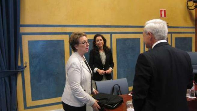 La consejera de Hacienda y Administración Pública, Carmen Martínez Aguayo