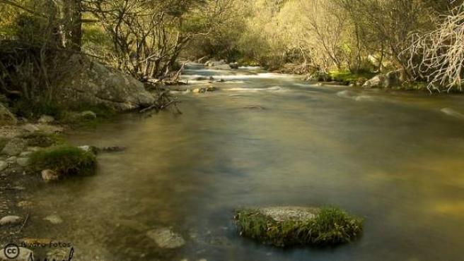 Imagen del río Manzanares.