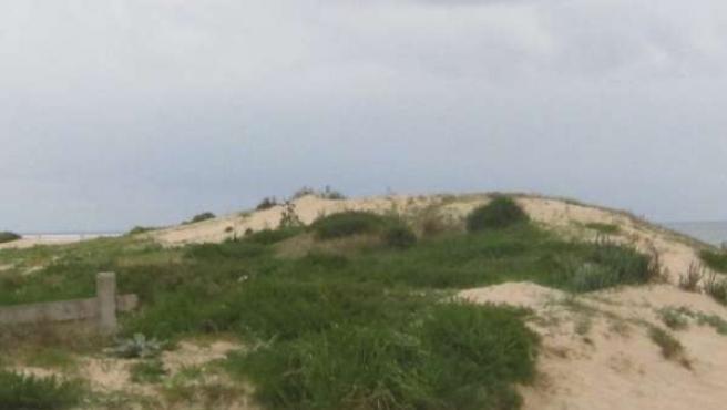 Playa, Dunas