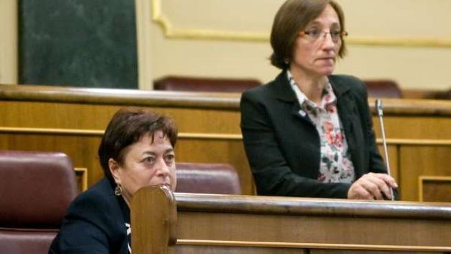 Olaia Fernandez Davila Y Rosana Pérez, Diputadas Del BNG