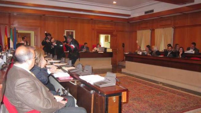 Momento del pleno municipal del Ayuntamiento de Córdoba