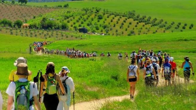 Participantes en la modalidad de marcha de los 101 Kilómetros de Ronda.