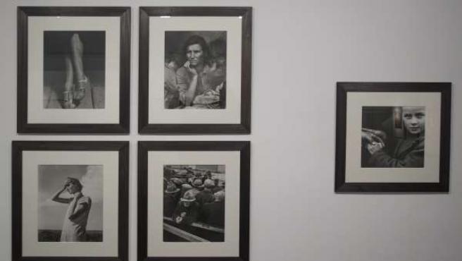 Exposición fotográfica en la Casa del Cordón de Burgos