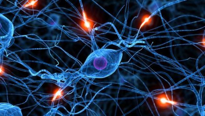 Recreación del funcionamiento de las neuronas.