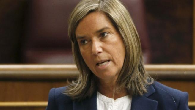 La ministra de Sanidad, Servicios Sociales e Igualdad, Ana Mato.