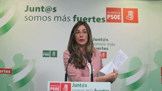 La diputada nacional socialista María José Rodríguez.