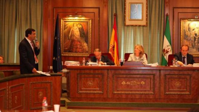 Angeles Muñoz en el pleno del Ayuntamiento de Marbella