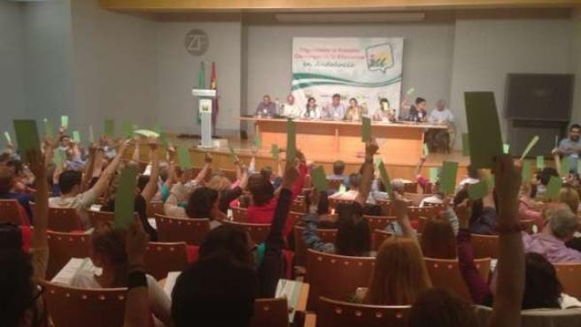 Momento de la votación los delegados de la Asamblea Provincial