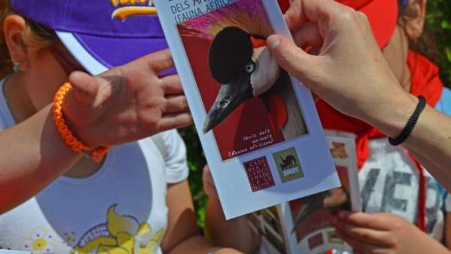Un escolar recibe el folleto con el léxico de la fauna africana de AVL y Bioparc