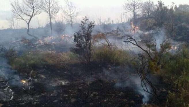 Incendio forestal en Bocairent