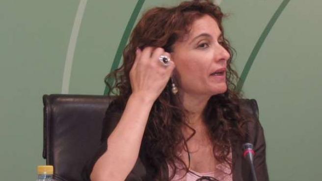 La consejera andaluza de Salud y Bienestar Social, María Jesús Montero