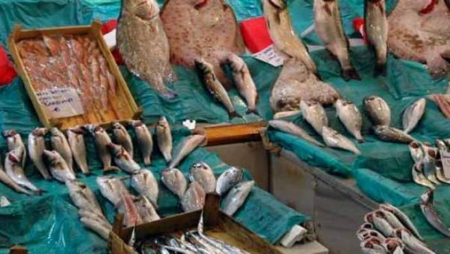 Varios pescados en un puesto de mercado.