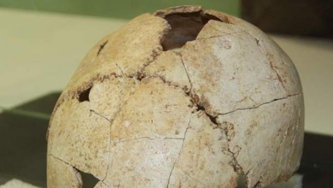 El cráneo más antiguo de Cataluña, que se remonta a hace 22.000 años.