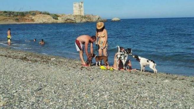 Dos bañistas en la playa para perros de Casares