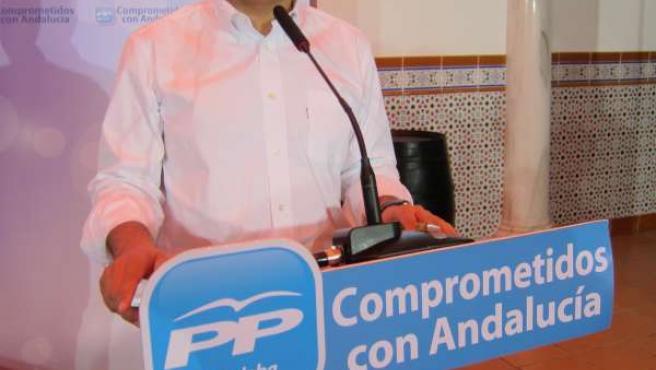 José Luis Sanz durante su intervención en Puente Genil