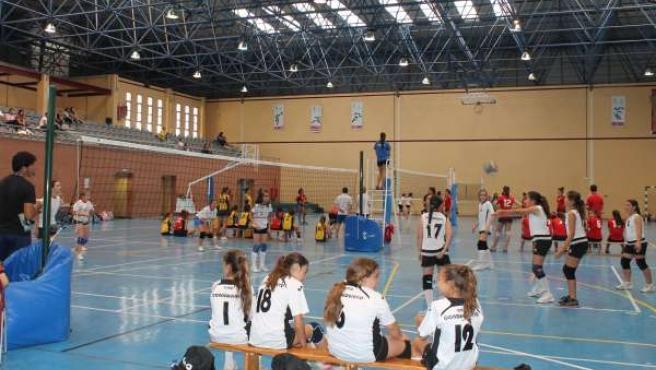 Polideportivo Municipal Mascareta en Tomares
