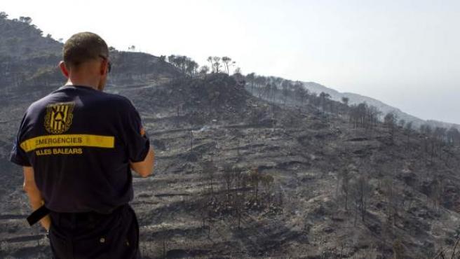 Un bombero, ante la zona afectada por el incendio que ha calcinado cientos de hectáreas de los montes adyacentes a los municipios de Andratx y Estellens (Mallorca).