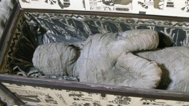 Un niño de diez años ha descubierto una momia dentro de un sarcófago, además de otros objetos egipcios, en la vivienda de su abuela. Ha ocurrido en la localidad alemana de Diepholz y se está a la espera de que los especialistas certifiquen su autenticidad.