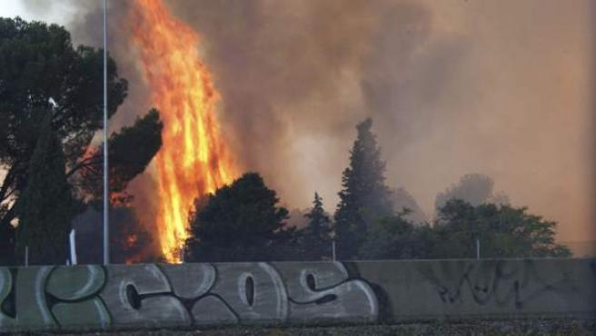 Imagen de las llamas, capturada desde la carretera de A Coruña, del espectacular incendio forestal declarado en un pinar situado en el municipio madrileño de Las Rozas.