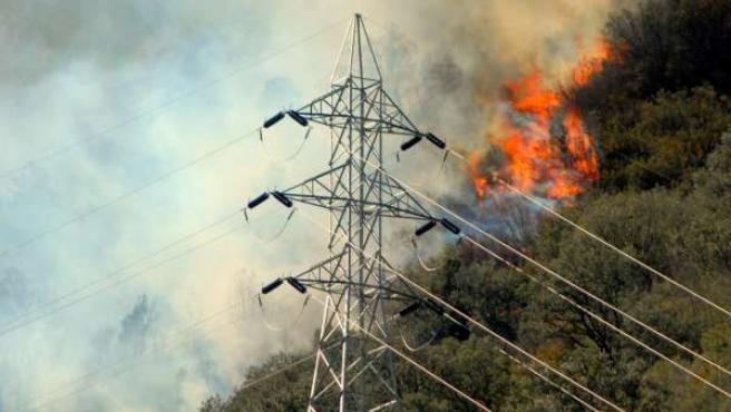 Incendio, Fuego, Llamas En El Pirineo De Lleida