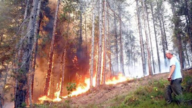 Incendio de bosque mediterráneo en Lukavac, a 150 Kilómetros de Sarajevo, Bosnia-Herzegovina.